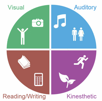 Pie chart of learning styles: visual, auditory, reading/writing, kinesthetics